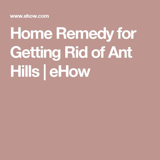 Home Remedy for Getting Rid of Ant Hills   eHow