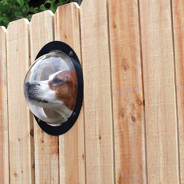 Pet Dome Window for fences