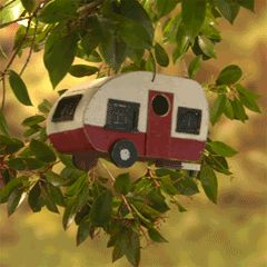 Trailer in the trees.