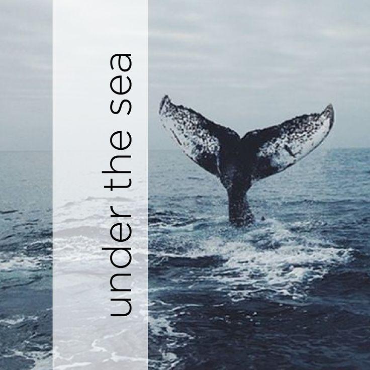 Deep See Ocean Life Whale Turtles Women's Casual Sneakers Canvas Slip Spring Original