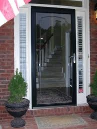 The black storm door I dream of with full view! I love the look of the black door with white moulding