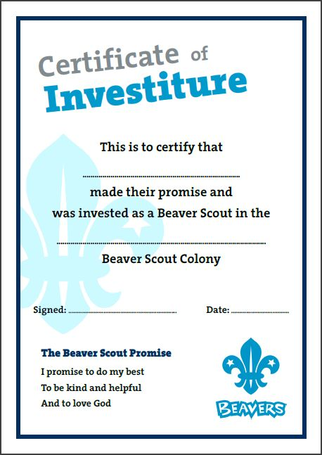 12 best Certificate templates images on Pinterest Beavers - first aid certificate template