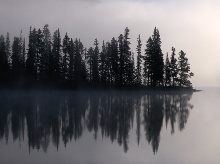 Morning Fog Dease Lake BC