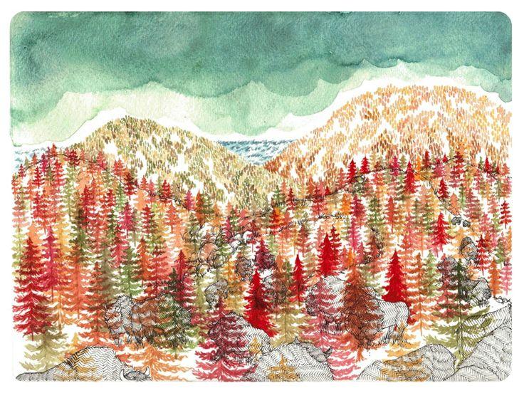 Lucy Engelman Illustrations