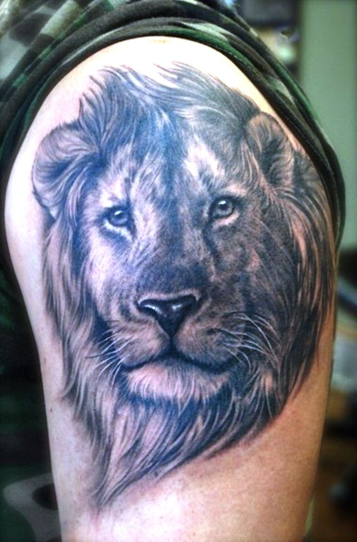 150 realistic lion tattoos and meanings 2017 collection - 25 Lion Tattoos Ideas For Men And Women
