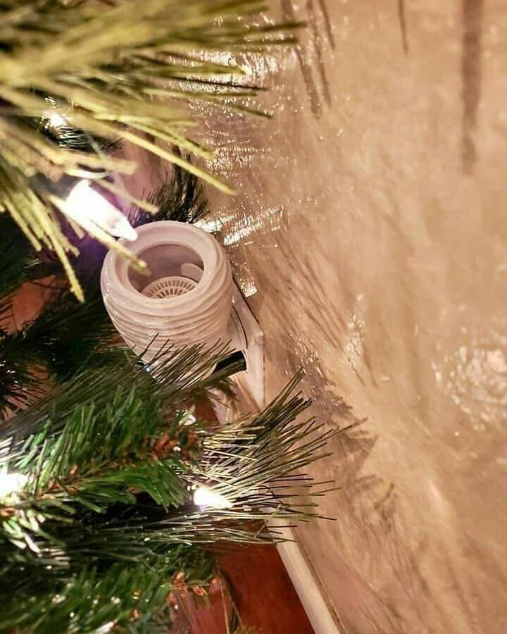 Scentsy Holiday Hack For Those That Love A Fresh Tree Scent But Not The Mess And Clean Up Of A Real Scentsy Wall Christmas Tree Scent Wall Fans Scentsy