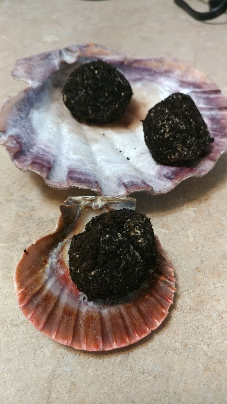 If you are going to be away on vacation these cookies are an easy way to provide your hermit crabs enough food until you return.  In addition to offering a Hermit Crab Oreo Vacation cookie I suggest sprinkling your crabitat with some dried foods. This will encourage foraging and offer lots of different foods at … … Continue reading →