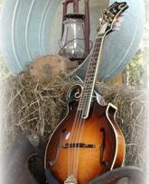 Check out the Alabama Bluegrass Music Association website
