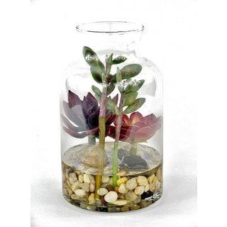 Gold Eagle Succulent Terrarium Plant Mix Floral Arrangement in Clear Vase with Rocks | Overstock.com Shopping - The Best Deals on Silk Plants