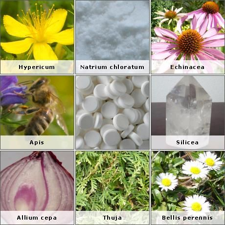 Beginner's Guide to Homeopathy .. Find out how homeopathy can play a positive role in your life and the life of your loved ones. www.livingmybest.org