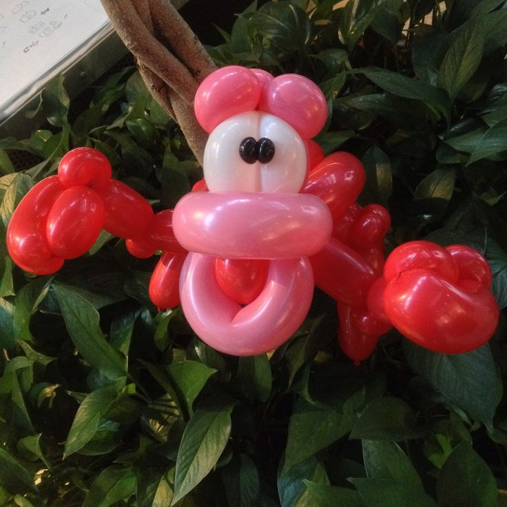 Balloon Sebastian
