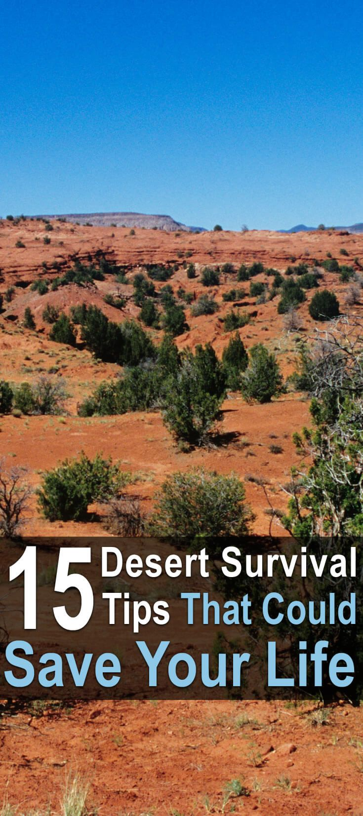 Hopefully, you won't ever find yourself stranded in the desert, but in case you do, these desert survival tips could save your life.