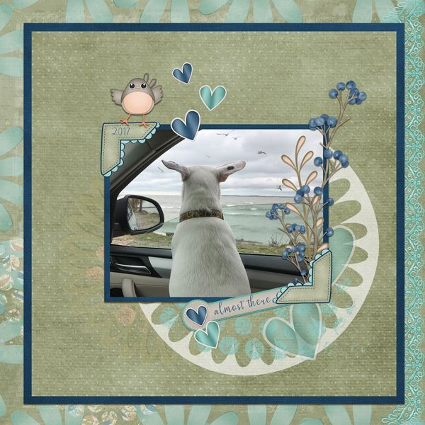 This scrapbook layout was made using digital scrapbook collection, Wings and Wishes sold by Kathryn Estry