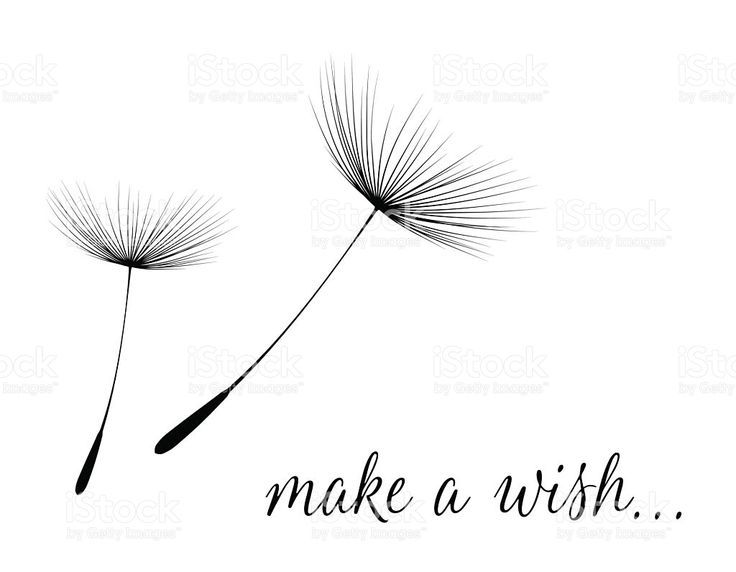 make a wish card with dandelion fluff royalty free stock vector art tatuajes femeninos en la muneca frases para vinilos daumen hoch vektor dackel