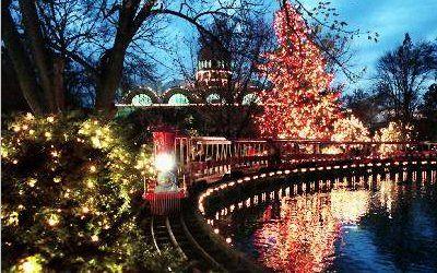 Cincinnati Zoo Festival Of Lights Holiday In 2019