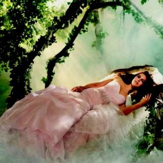 Disney Wedding Dresses Sleeping Beauty
