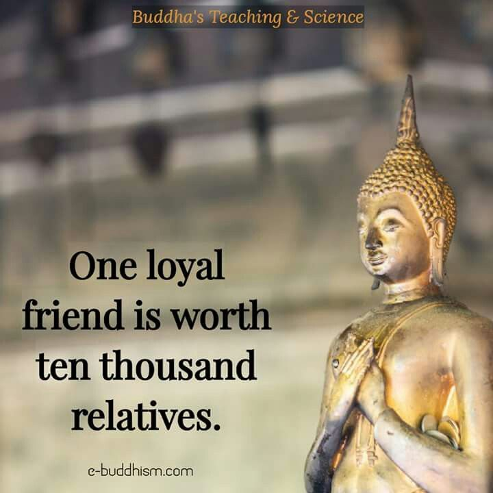 Loyal friend is worth than thousand relatives.