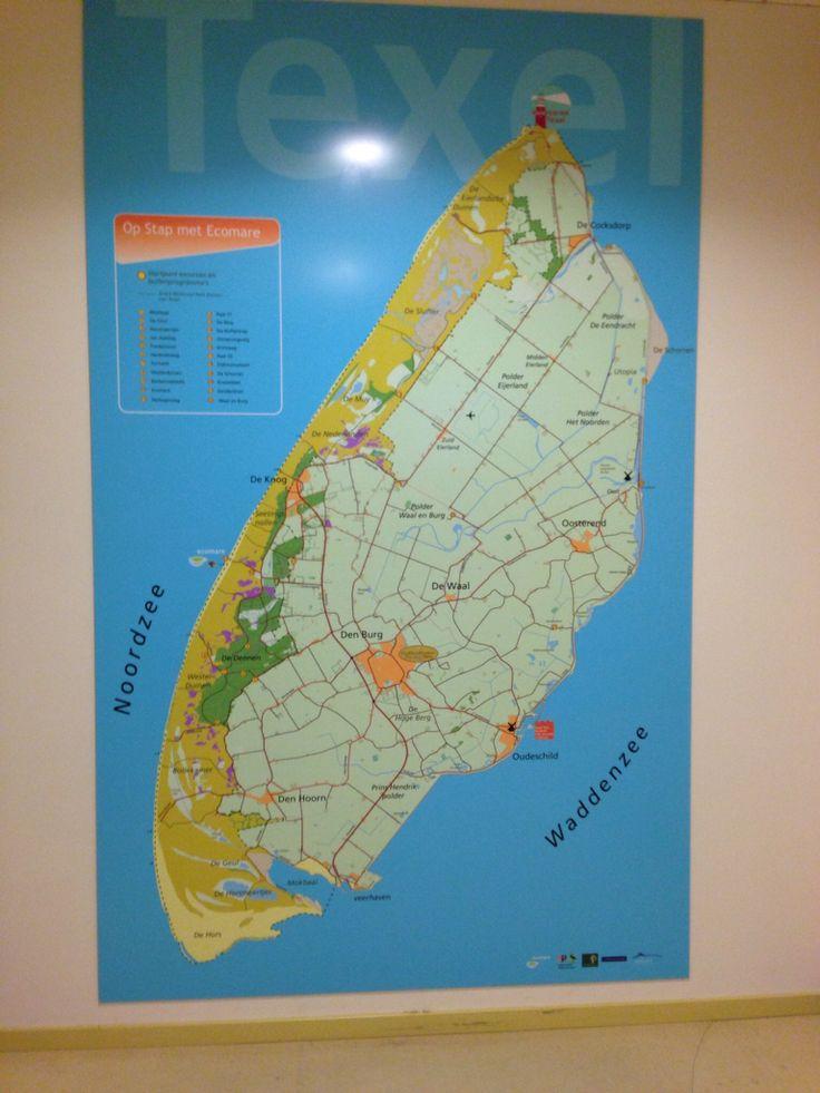 Texel .netherlands