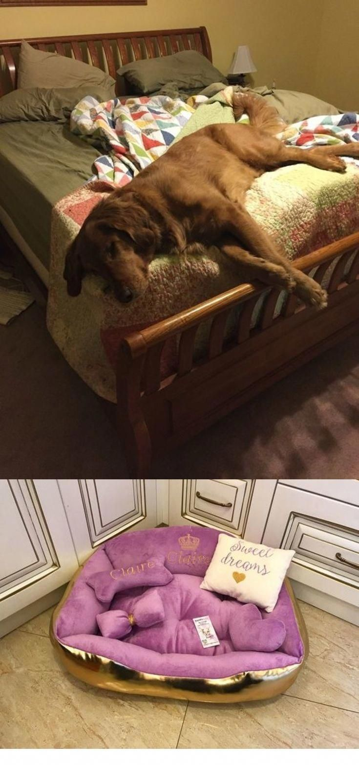 Cheapest Doggie Beds For Small Large Dogs Going To By Cheap Dogs Beds Dog Steps For Beds Or Even See Details Mem Cool Dog Beds Dog Pet Beds Cheap Dog Beds
