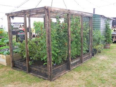 Fruit Cage Hampton