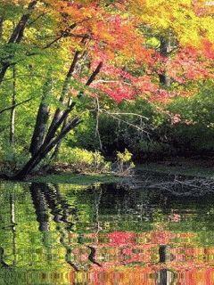 Осенние пейзажи на открытках. Cтраница 11