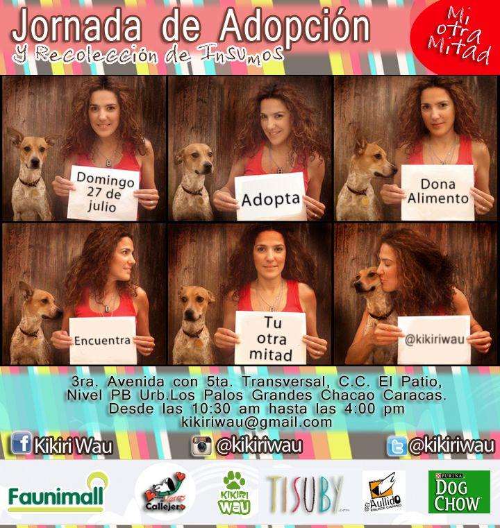 Jornada de adopción para perros y gatos #MiOtraMitad con el apoyo de Tisuby