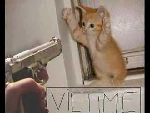 plus jamais de souris promis!