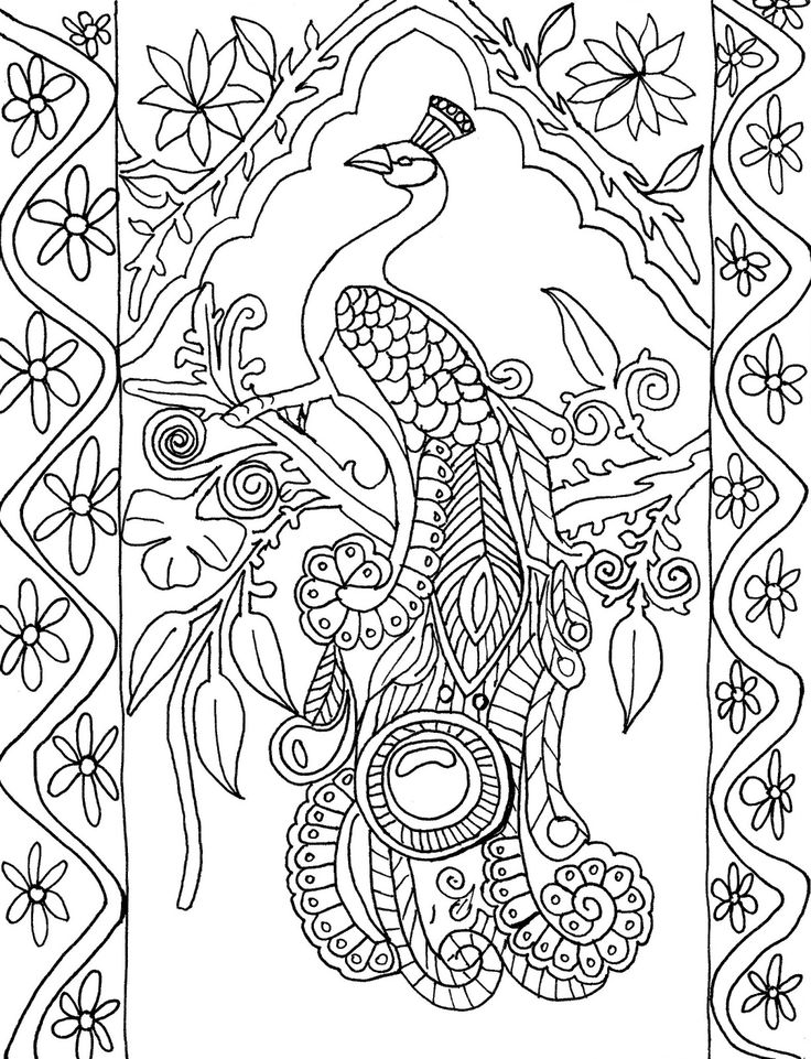 Best 110 Peacocks Art Coloring images on Pinterest