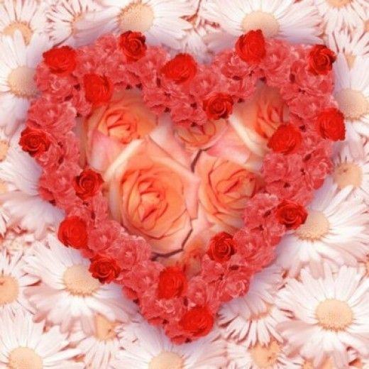 Wikimedia Flower Heart
