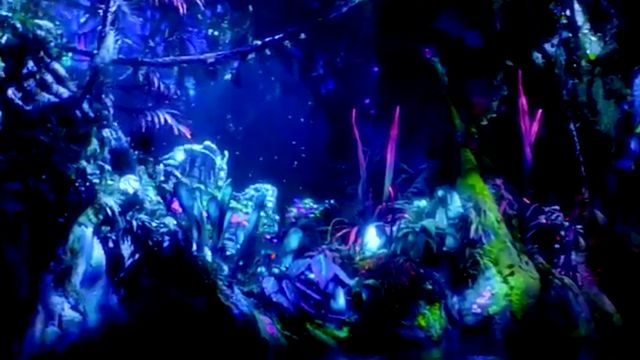 Check out a new Pandora: The World of Avatar video that offers a first look inside the attraction opening May 27 at Disney's Animal Kingdom.
