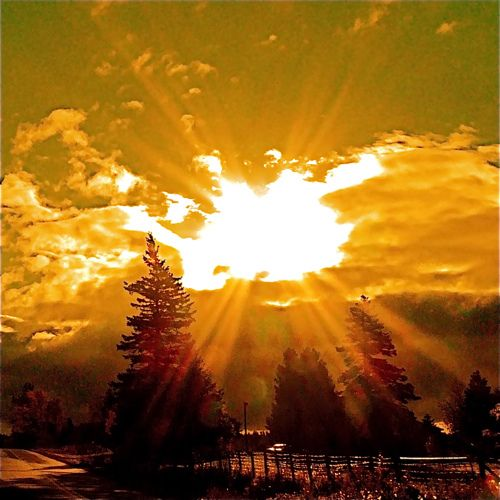 329 best it was a new day yesterday images on pinterest sun rays sun rays recent photos the commons getty collection galleries world map app gumiabroncs Images