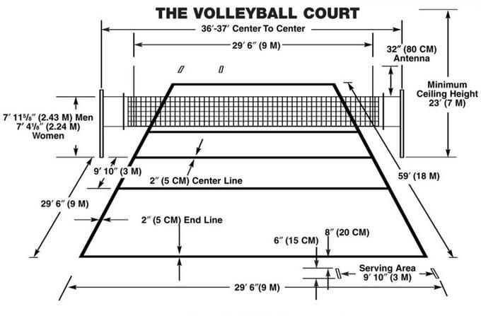 volleyball court diagram with positions