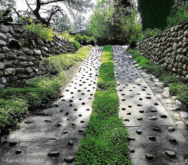 40 Different Garden Pathway Ideas: Steep Driveway Idea In 2019