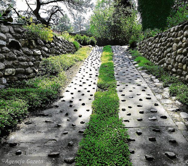 Steep driveway idea landscaping and yard pinterest for Sloped driveway options