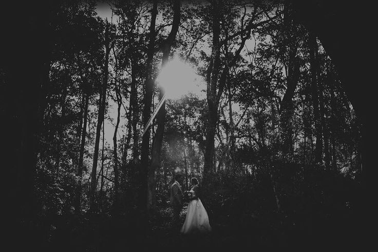 Forest Wedding in Kangaroo Valley NSW . . . . #northlandwedding #whangareiweddings #blackandwhite #forest #forestwedding #mangawhaiwedding