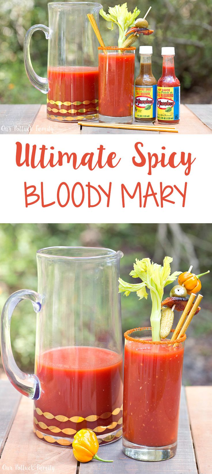 Ultimate Spicy Bloody Mary - Our Potluck Family