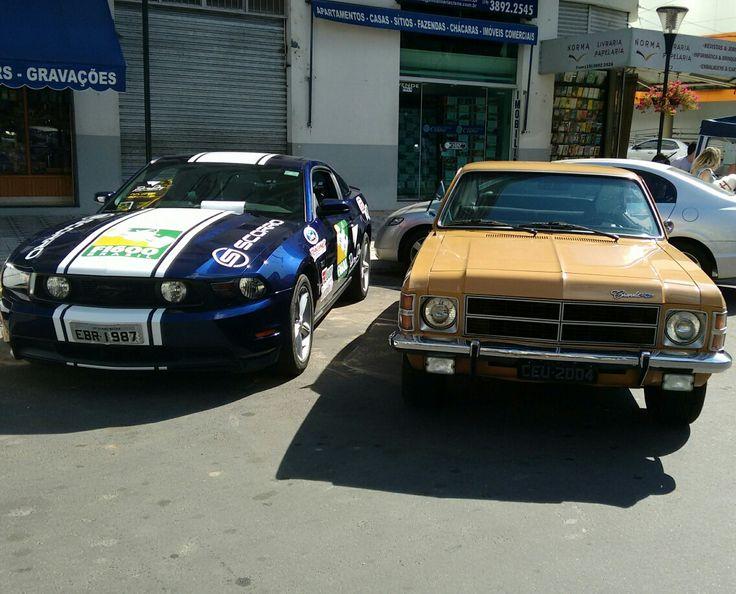 Mustang x Opala