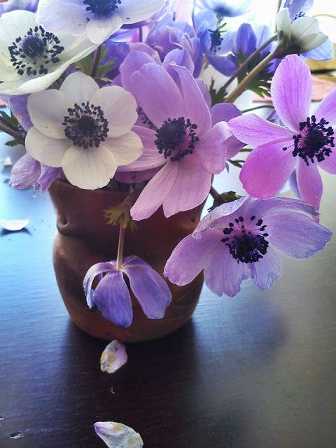 Cheerfulmoon: anemonlar biterken....