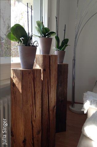 Orchideen auf Holzblöcke