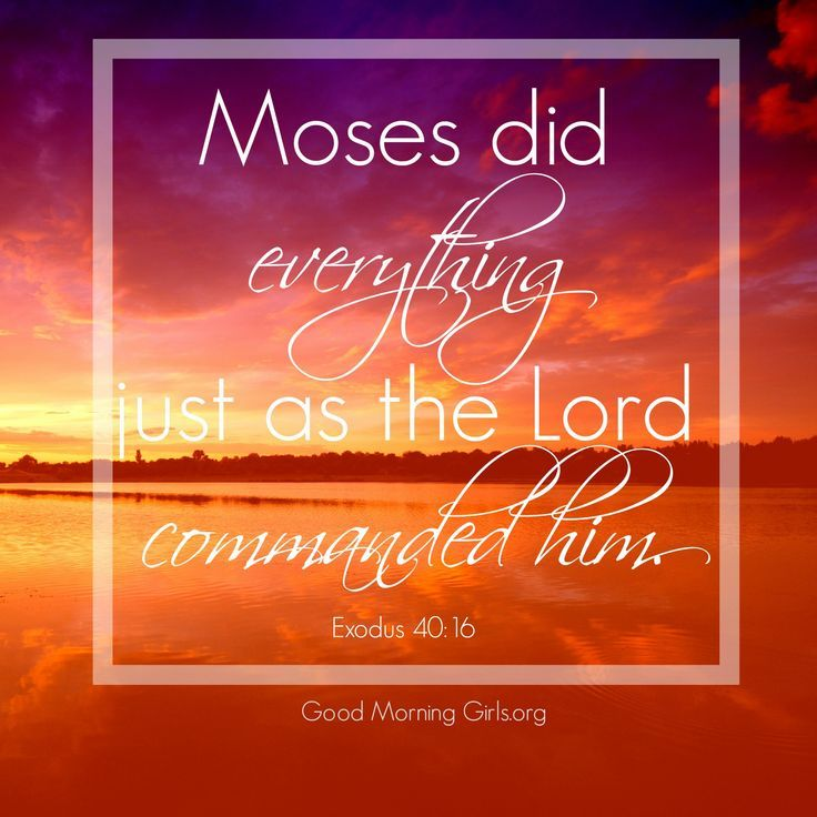 Moses did everything just as the Lord commanded him. Exodus 40:16 May the same be said of us!