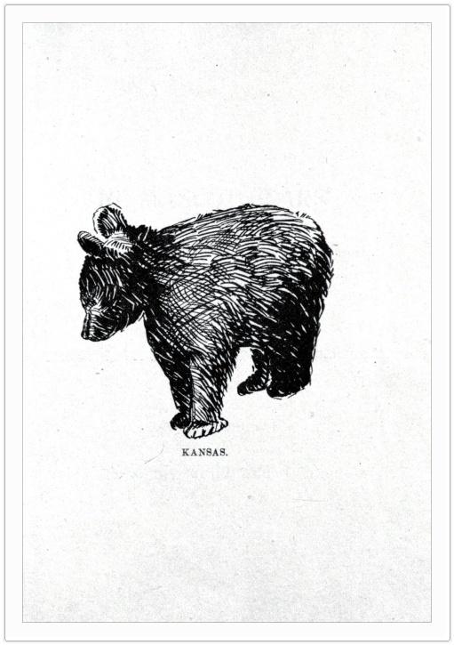 free printable art f r e e pinterest bear tattoos bear drawing and tattoos