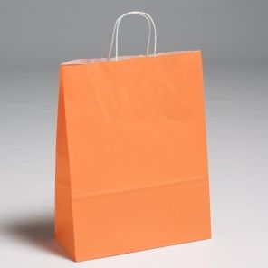 Orange Premium Paper Carrier