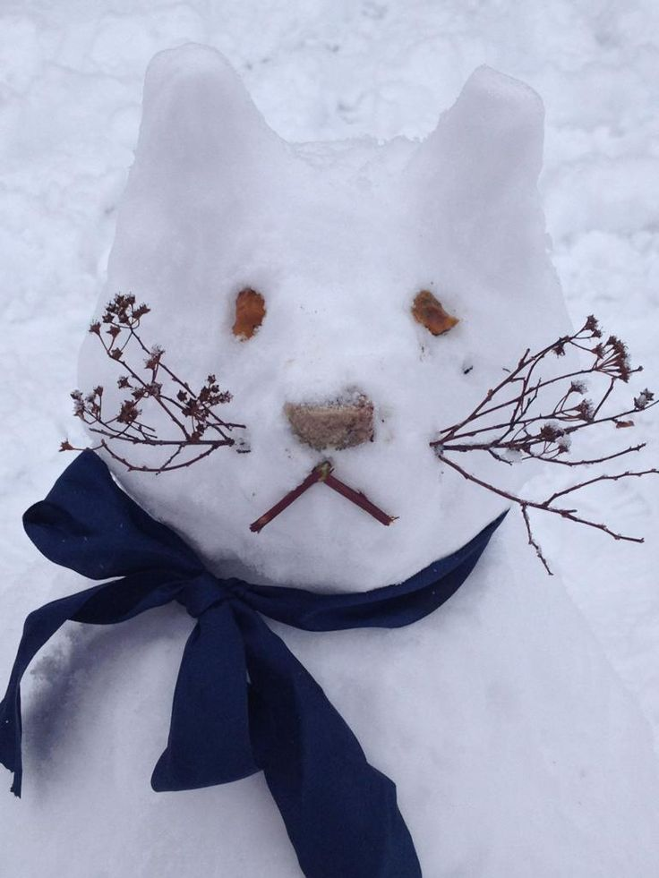 Cutest Snow Cat Ever! For Christmas he could have a red plaid bow or just red. So Cute!