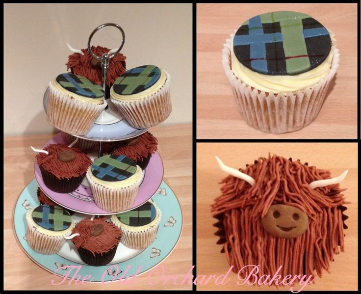 Scottish themed cupcakes - chocolate heilan coos for the kids and 'cranachan' cupcakes with whisky buttercream and tartan topper for the adults.