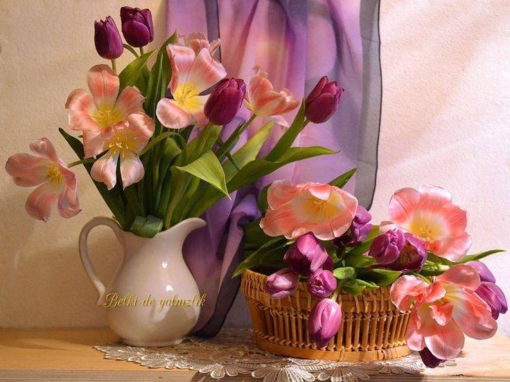 les 844 meilleures images du tableau fleurs  u0026 vase fleurie