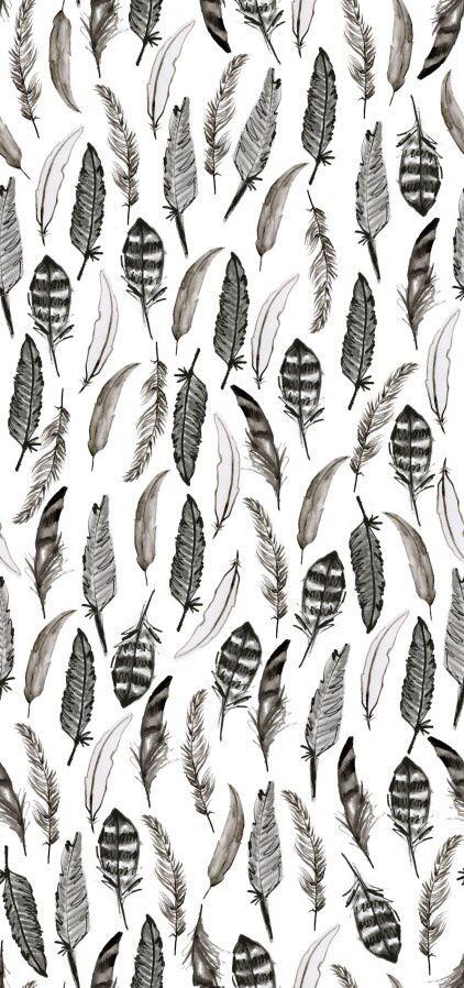 Plumas blanco y negro