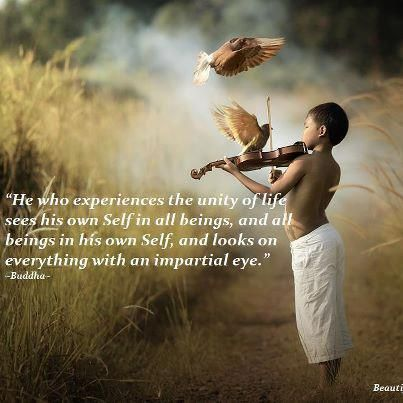 """""""He who experiences the unity of life sees his own Self in all beings."""" - Buddha"""