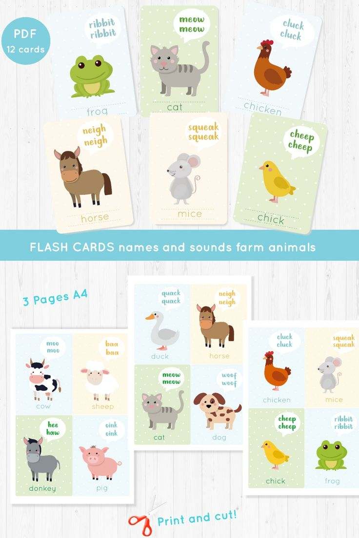 English flash cards for kids farm animals names and