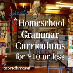 Are you looking for a frugal but high quality Grammar Curriculum? Here are 3 great curriculums including 1 from Cathy Duffy's Top 102 Homeschool Curriculums for $10 or less that you should consider!