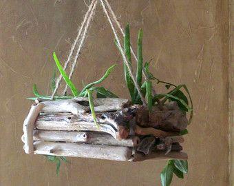 Driftwood Hanging Planter - Single Edition, Rectangular Hanging Planter, Driftwood Planter, Driftwood Home Decor, Beach Decor, Driftwood Art